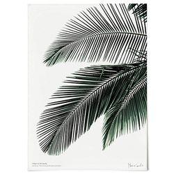 패브릭 포스터 F016 식물 그린 야자수A [중형]