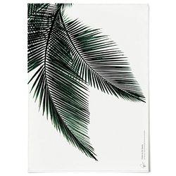 패브릭 포스터 F017 식물 그린 야자수B [중형]