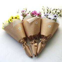 리얼데이지 꽃다발-5color