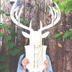 디어 헌팅트로피(자작나무)