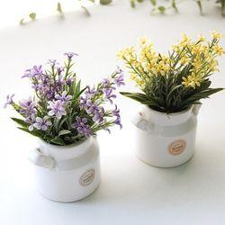 리얼별꽃 우유병도자기세트-4color