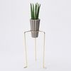 POT+STAND.02 (Gold Small)