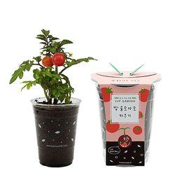 컵가든 - 방울토마토