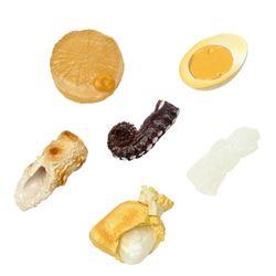 식품 샘플 시리즈 따뜻한 오뎅 편 (캡슐토이)