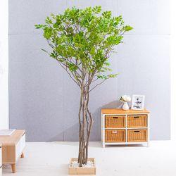 라인느티나무 190cm 조화나무