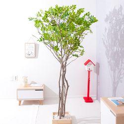 라인느티나무 250cm 조화나무