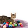 꼬시캣 캣츠볼 고양이 울볼 - 3가지 사이즈 선택