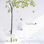 dc110-숲속의 자작나무2