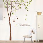 dc111-자작나무 그늘