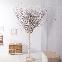 소원자작나무 230cm 조화나무