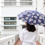 long umbrella 우양산