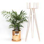 중형코퍼화분+화분스탠드60+공기정화식물