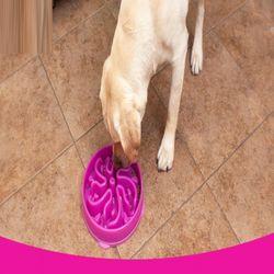 슬로우식기 중대형견용 강아지과식방지 강아지급체방