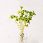 프리저브드플라워 - Mini cone flower (미니콘플라워)