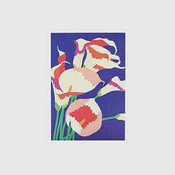 Post card - Illustration (Calla)