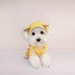 My Dogs Bonnet Yellow