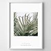 그린 보테니컬 식물 액자-윈드스토리 no.02 (A4)