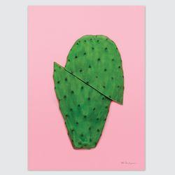 컬러팝 시리즈 디자인 포스터-핑크선인장 (A4)