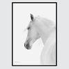 북유럽 모던 인테리어 액자-white horse (A3)