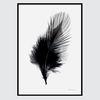 모던 블랙화이트 알루미늄 액자-feather(A3)
