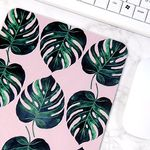 식물 일러스트 마우스패드 + 미니 포스터 2종 세트 6