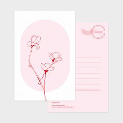 drawing postcard - magnolia