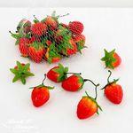 미니 딸기(25pcs BAG) FMDM10029