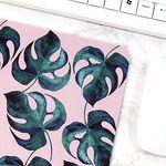 식물 일러스트 마우스패드 + 미니 포스터 2종 세트 8