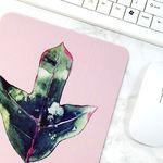 식물 일러스트 마우스패드 + 미니 포스터 2종 세트 9