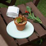 규조토 화분받침 플라워 팟 트레이 Flower Pot Tray