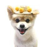 폼폼 밀짚 모자 (옐로우)