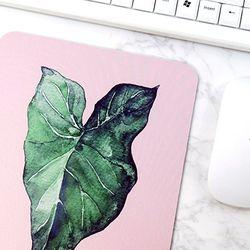 식물 일러스트 마우스패드 + 미니 포스터 2종 세트 11