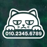 리틀메테오 주차번호 스티커 LMCP-005 주차 고양이