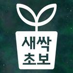 리틀메테오 초보운전 스티커 LMCN-034 새싹 초보