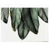 패브릭 포스터 F057 식물 나뭇잎 패밀리 [중형]