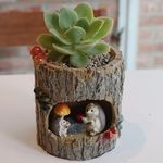 통나무 고슴도치 가족 다육 식물 화분