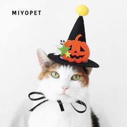 MIYOPET 할로윈모자 코스튬 고양이 강아지