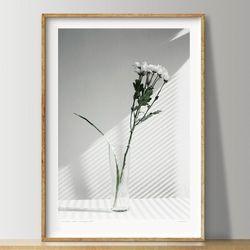 우드 프레임 포스터(M) 그리너리 22종