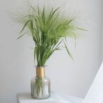 페니쿰 그린인테리어 식물 생화