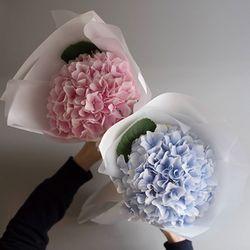 수국 생화꽃다발 선물