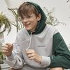 green segment hoody (light gray)