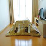 정방형 코타츠 이불 - 후아네코 (190X190cm)
