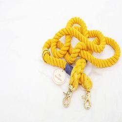 노랑놀아 로프리드줄