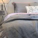 Indi Pink & Mono Gray Modal Bedding Set Q 풀세트