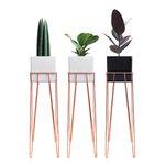 재즈벤치 사각화분스탠드+공기정화식물A세트