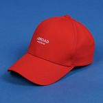 Wanderer Ball Cap (red)