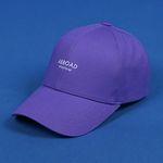 Wanderer Ball Cap (purple)