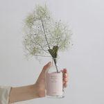 Autumn&Winter 스모그트리 (preserved flower)