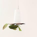 행잉포트 (스카이플랜터) & 공기정화식물