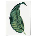패브릭 포스터 F091 식물 그림 그린 터치 1 [중형]